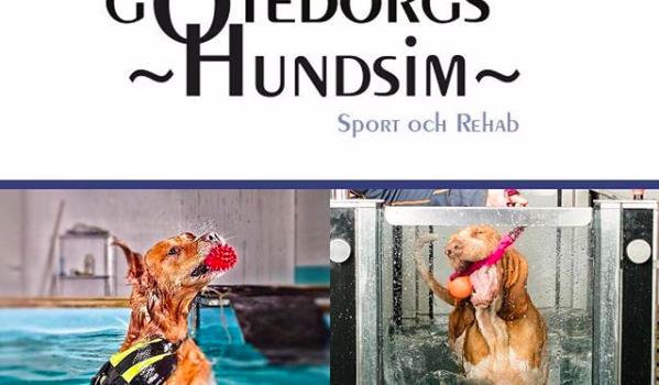 Göteborgs hundsim